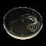 Black Garlic Tapas Bowl